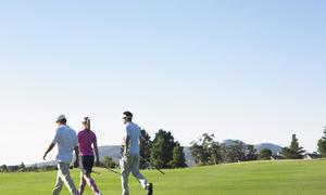 千葉県市原市でフラットなホールが多いゴルフ場まとめ