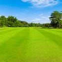 兵庫県でフェアウェイが広いゴルフ場まとめ
