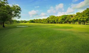 山梨県でフェアウェイが広いゴルフ場オススメ8選