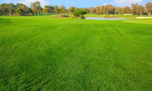 茨城県でフラットなゴルフ場まとめ