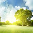 茨城県の早朝スルーでラウンドができるゴルフ場まとめ