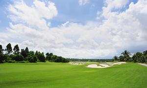 神奈川県でフェアウェイが広いゴルフ場まとめ
