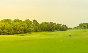 東京でフェアウェイが広いゴルフ場まとめ