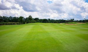 栃木県でフェアウェイが広いゴルフ場まとめ