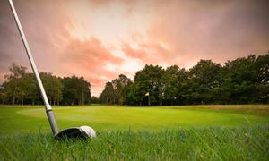 宮崎県で高低差の少ないフラットなゴルフ場まとめ