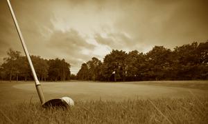 日本におけるゴルフの歴史 100年以上愛されるスポーツになるまで