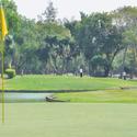 群馬県富岡市周辺でアプローチ練習場が併設されたゴルフ場特集